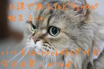 テレビ3.jpg
