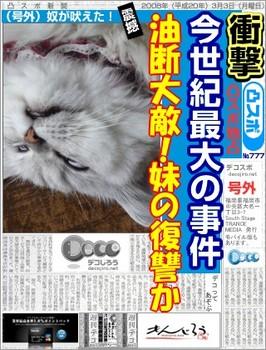 decojiro-20111223-041142.jpg
