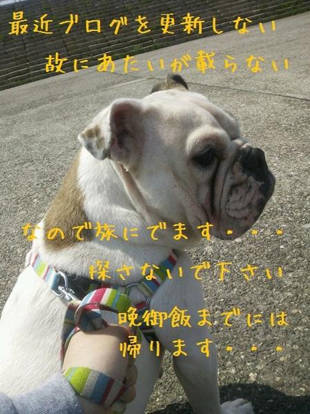 DSC_00021.jpg
